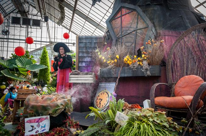 Acm d cors jardin botanique de montr al - Jardin botanique de montreal heures d ouverture ...